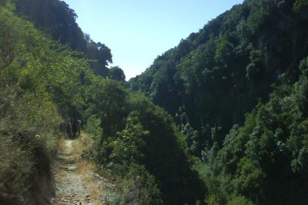 Το φαράγγι του Κάρδαρη στο Γεωργίτσι Λακωνίας